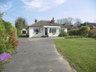 Detached Bungalow for sale in Bookham