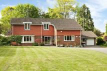 Detached house for sale in Bookham