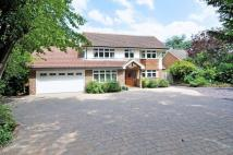 5 bed Detached house for sale in Bookham