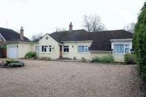 Detached Bungalow in Fetcham