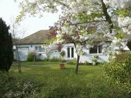 3 bed Detached Bungalow for sale in Effingham