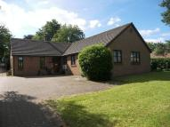 Detached Bungalow for sale in Bookham,