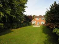 Detached property for sale in Bushey