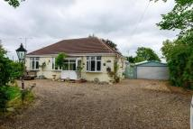 Detached Bungalow for sale in Gravel Lane, Banks...