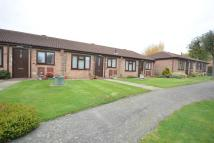 2 bed Semi-Detached Bungalow in Shrimpton Court...