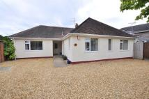 5 bedroom Detached Bungalow in Wimborne Road West...