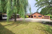 4 bedroom Detached Bungalow for sale in Wimborne Road West...