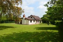 4 bedroom Detached house for sale in Helions Bumpstead...