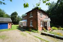 Detached house in Clare, Sudbury, Suffolk