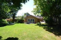 4 bedroom Semi-Detached Bungalow for sale in Clare, Sudbury, Suffolk