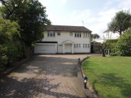 4 bedroom Detached house in Beech Hill, Barnet, EN4