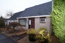 2 bedroom semi detached property to rent in Allanton Grove, Wishaw...