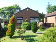 2 bed Detached house in Pinewood Walk...