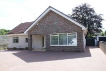 Detached Bungalow in Woodfoot Road, Hamilton...