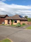 Shearer Drive Detached Bungalow to rent