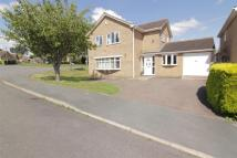 4 bedroom Detached home in Elm Close, Stilton...