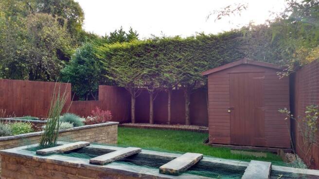 rear garden4.jpg