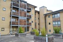 Studio apartment in Ruth Bagnall Court...