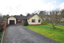 Bungalow in Poltimore Close...