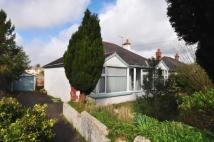 Bungalow for sale in Poltimore Road...