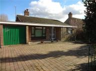 Bungalow to rent in Bedford Road, Wootton...
