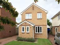3 bed house to rent in Grasmere, Hethersett...