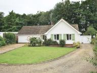 3 bed Bungalow to rent in Charles Close, Wroxham...