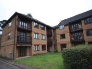 Pine Court Flat to rent