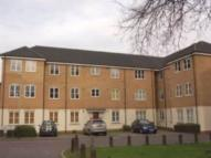 Whitworth Court Flat to rent
