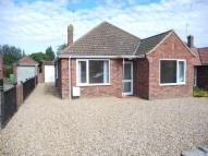 Bungalow to rent in Gordon Avenue, Norwich ...