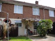 3 bedroom home to rent in Beecheno Road, Norwich ...