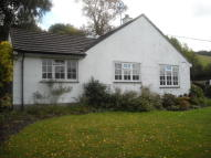 3 bed Detached Bungalow in Cambria 4 Graig...