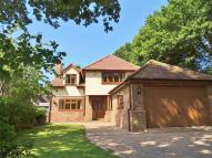 5 bed Detached house in BILLERICAY