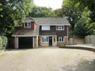 4 bedroom Detached home in Shenfield