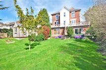 Shanklin Detached property for sale