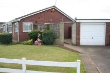 Coniston Bungalow to rent