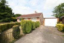 Bungalow to rent in Measham Drive, Stainforth