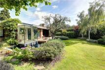 Detached property in Garden Close, Putney...