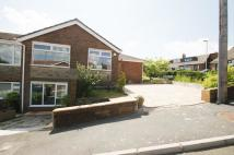 4 bed Semi-Detached Bungalow for sale in The Spinney, Scouthead...