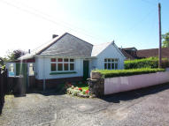 Bungalow to rent in Chaddiford Lane...