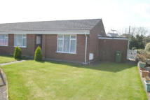 Terraced Bungalow to rent in Chittlehampton...