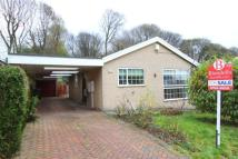 Bungalow in Summerfield Road...