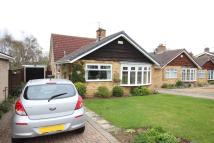 3 bedroom Detached Bungalow for sale in Farndale Drive...