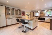 Detached Bungalow for sale in Cherry Tree Croft...