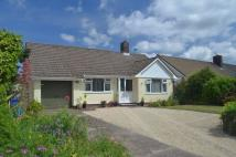 Detached Bungalow in Honiton
