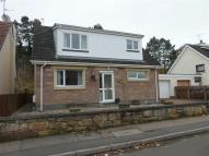 4 bed semi detached property in Wiseman Road