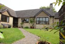 Bungalow to rent in North St, Axminster...
