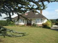 4 bed Bungalow in Musbury Road, Axminster...