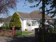 Bungalow to rent in Dragons Mead, Axminster...