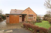 Bungalow for sale in Cavill Road, Sheffield...